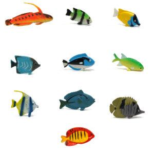 all fish